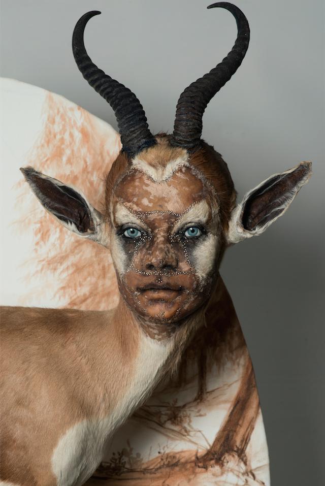 Animales disecados que te observan con rostros humanos